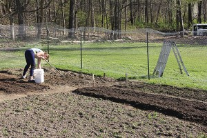 Green Thumb Series - Part 2 Finding the Right Location